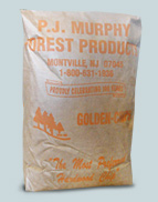 P.J. Murphy Golden Chip